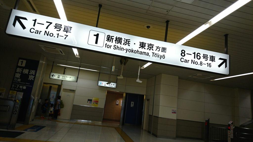 東京出張占いです